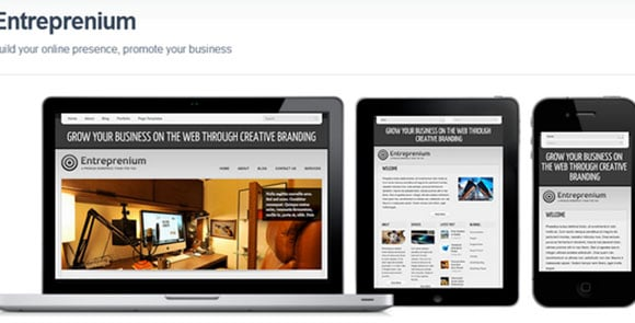 wpid wordpresstheme 14 50 Top WordPress Themes Released in 2012