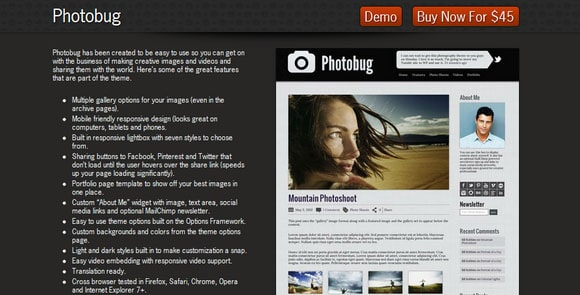wpid wordpresstheme 15 50 Top WordPress Themes Released in 2012