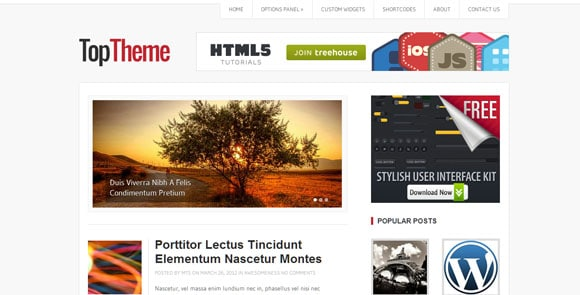 wpid wordpresstheme 35 50 Top WordPress Themes Released in 2012