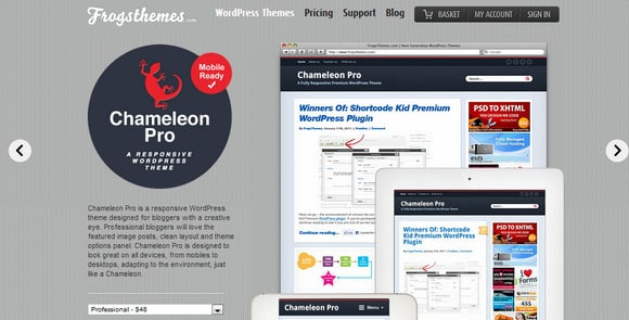 wpid wordpresstheme 8 50 Top WordPress Themes Released in 2012
