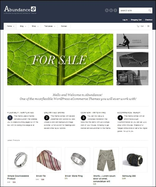 Abundance wordpress business themes