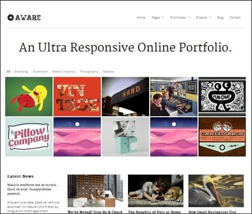 Aware responsive WordPress theme