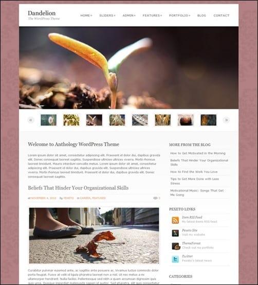 Dandelion wordpress business themes