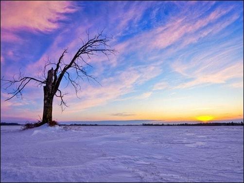 HD-Winter-Wallpaper-winter-wallpaper