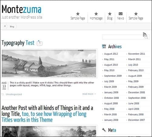 Montezuma responsive WordPress theme