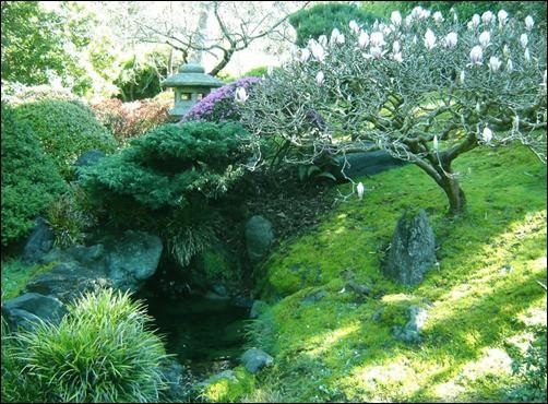 Nice-Japanese-Garden-in-Spring-spring-wallpaper