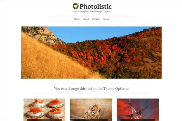Photolistic photography website templates
