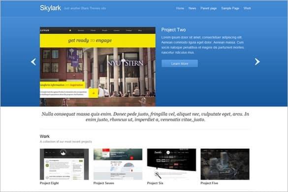 Skylark is a free photograph WordPress Theme