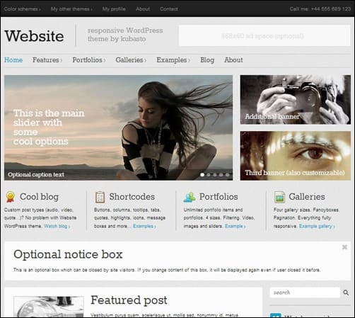Website responsive WordPress theme