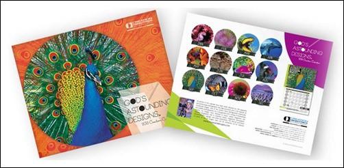 Your-2013-Creation-Calendar