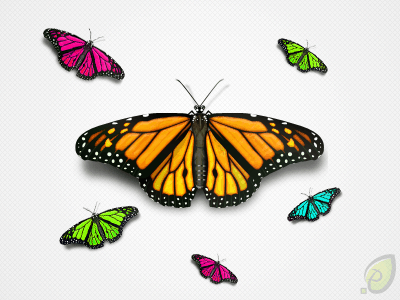 wpid-butterflyiconpreview.png