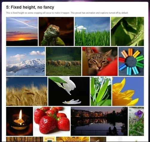 justified-image-grid