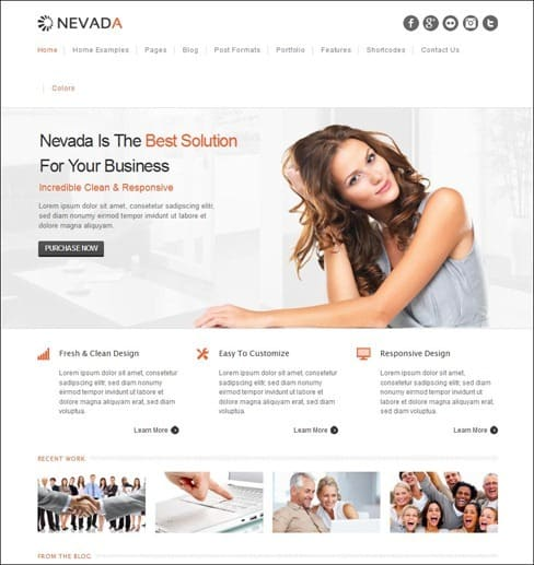 nevada wordpress business themes