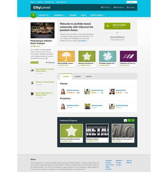City Level Community Frontpage Website PSD