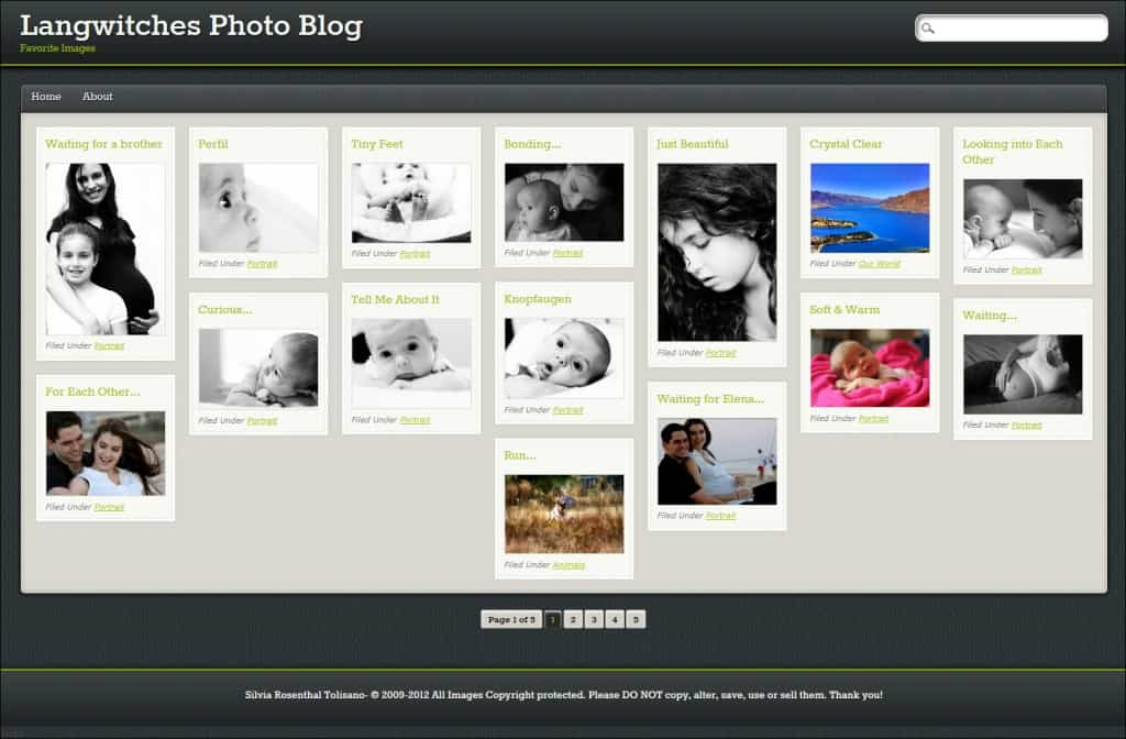 pinblack photography website template