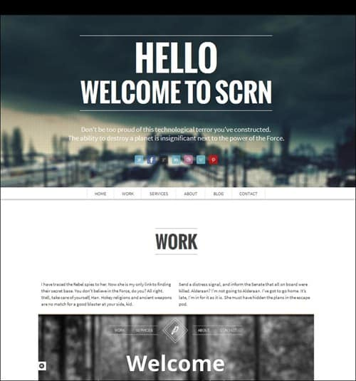 scrn wordpress business themes