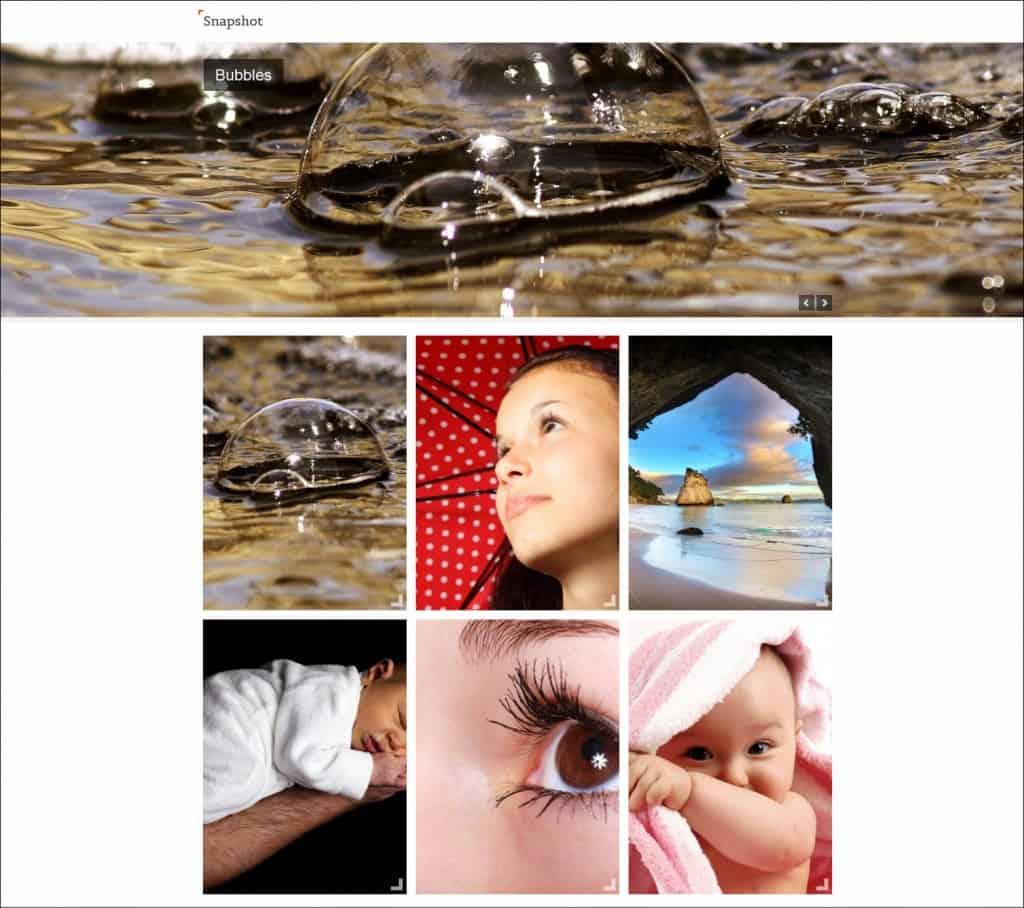 snapshot photgraphy website template