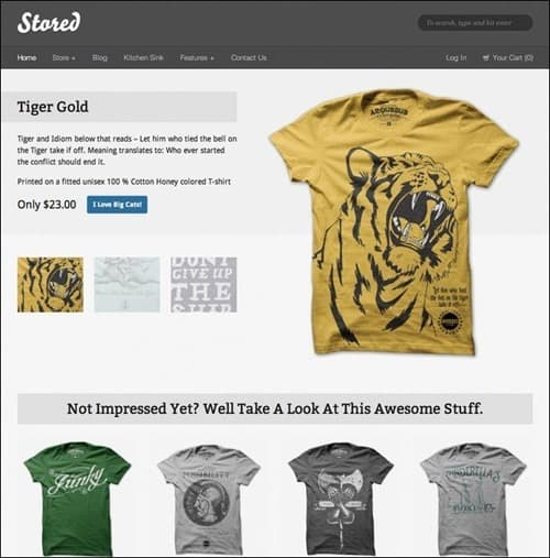 stored WordPress ecommerce themes