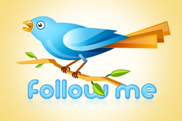 wpid-twitter-bird.jpg
