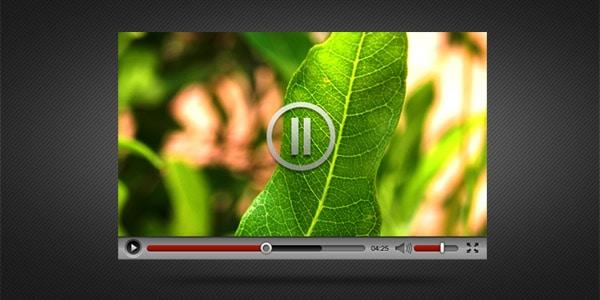 wpid-videoplayer-skin.jpg