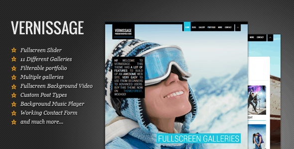 Vernissage- Responsive Photography:Portfolio Theme
