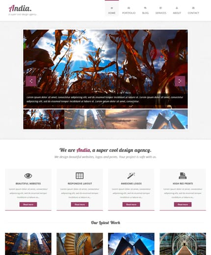 andia-responsive-agency-template-preview