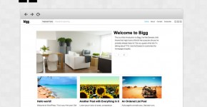 bigg-free-responsive-wordpress-theme
