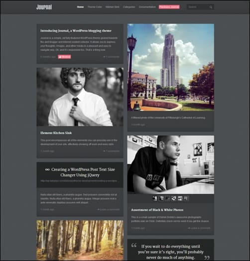 Daily journal responsive WordPress Theme