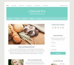 Lifestyle pro theme