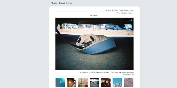 Photo-blog theme
