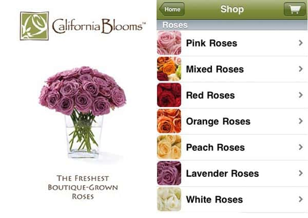 california blooms