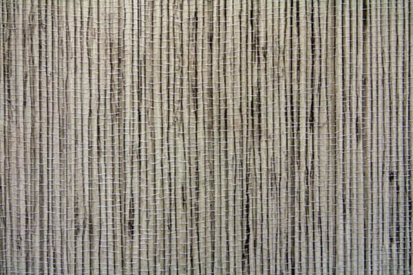 bamboo texture by beckas