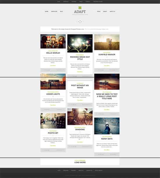 Adapt Responsive WordPress Grid Themes