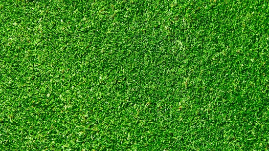 1-Bright-Green-Grass-Material-Textures-Thumb01