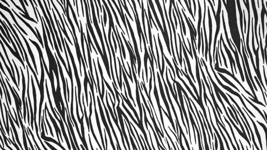 14-High-Resolution-Animal-Fur-Texture-Thumb14