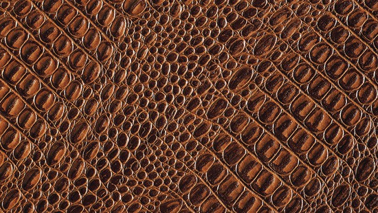 7-Animal-Fur-Texture-Thumb06