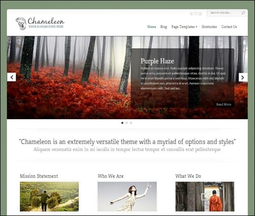 Chameleon-simple-wordpress-themes