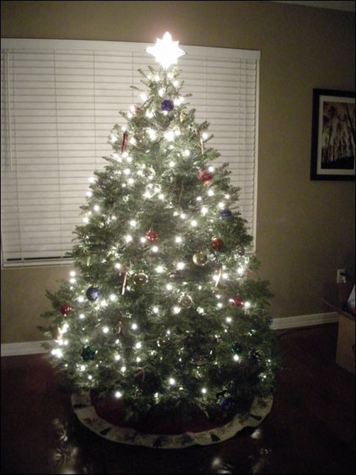 Christmas-Tree-Image