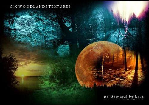 Large-Woodlands-Textures