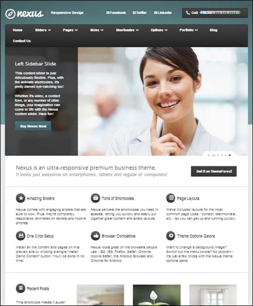 Nexus wordpress business themes