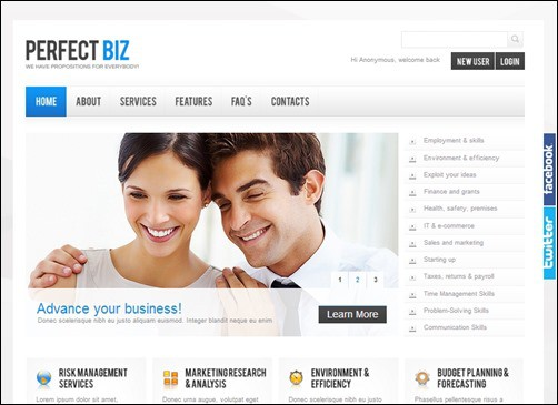 Perfect-Biz-drupal-7-themes