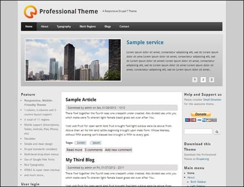 Professional-Theme-drupal-7-themes