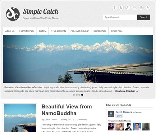 Simple-Catch simple wordpress themes