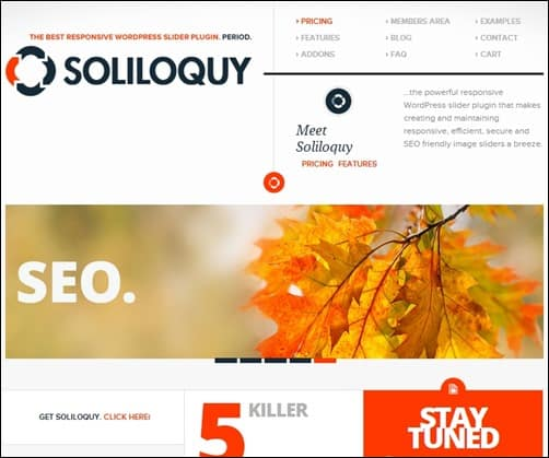 Soliloquy-Lite-wordpress-slider-plugin