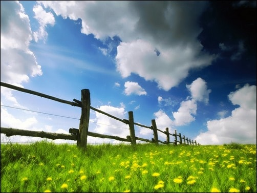 Spring-Time-spring-wallpaper