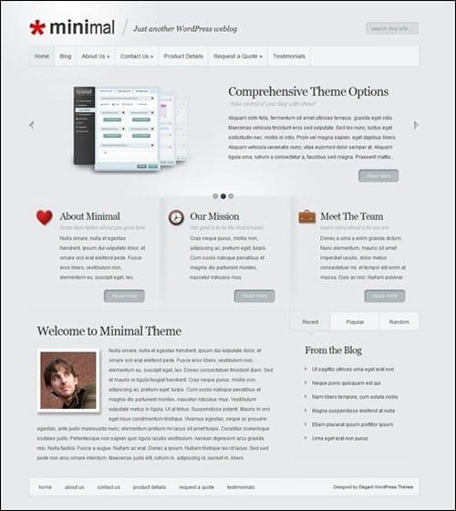 elegant-minimal simple wordpress themes