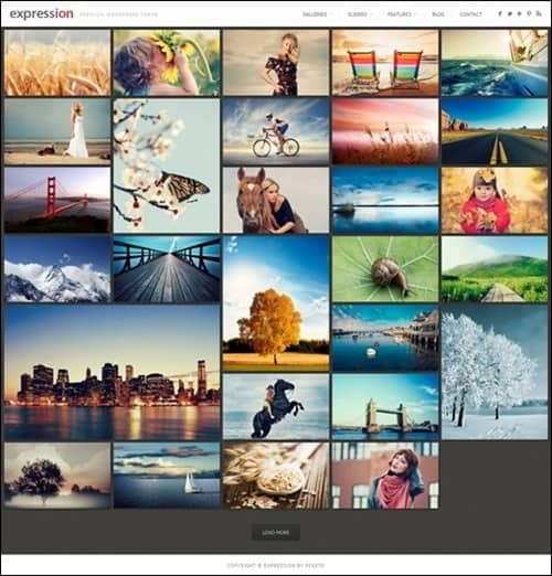 expression WordPress Photography Themes