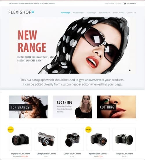 flexishop-2 WordPress ecommerce themes