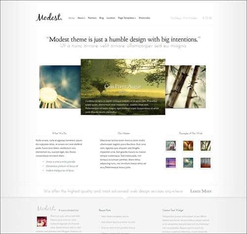 modest WordPress Photography Themes