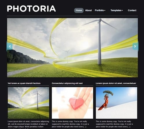 photoria portfolio theme